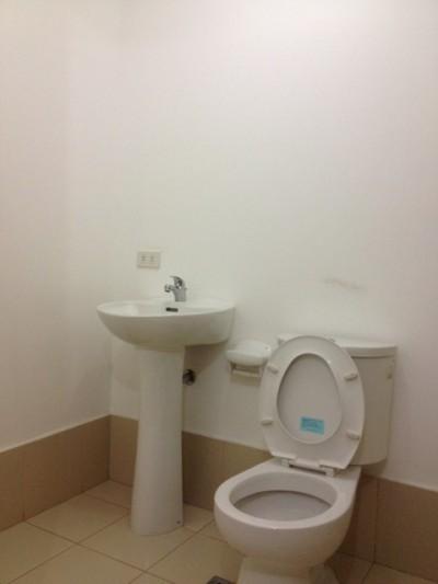 付属品のないトイレ