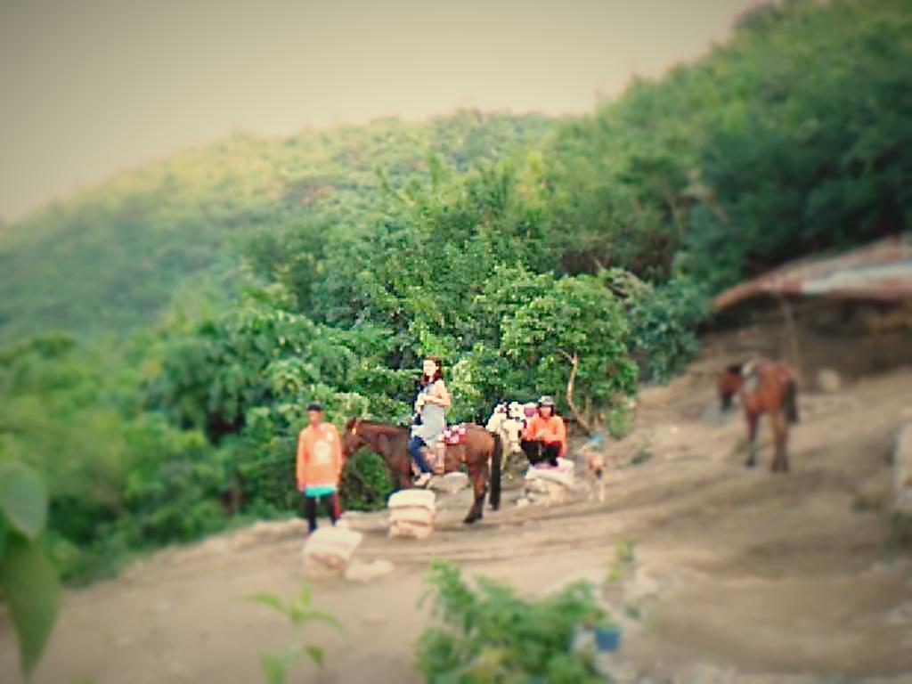 フィリピン 乗馬